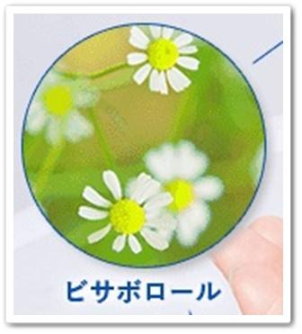 psホワイトクリーム 口コミ 効果 おぐねー 美白オールインワンクリーム ぴかいち 通販 最安値 ブログ 美容成分 ビサボロール