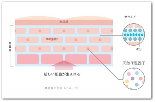 エムフォルテ 口コミ 万田発酵 化粧品 M forte えむふぉるて エイジングケア 効果 お試 通販 最安値 ブログ 肌