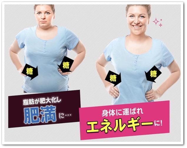 シュガリミット 口コミ 効果 糖質活用 ダイエットサプリメント Sugalimit しゅがりみっと 痩せない パッケージ 糖質制限2