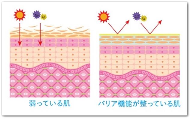 ゆらはだ 口コミ 効果 yurahada 通販 最安値 公式 バリア機能